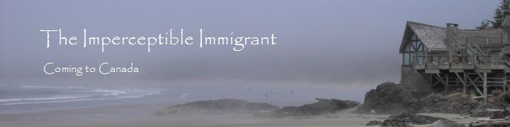The Imperceptible Immigrant